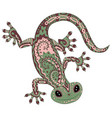 colored gecko in patterned style vector image