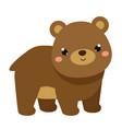 cute bear cartoon forest animal isolated on white vector image