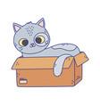 cute gray cat lying in cardboard box cartoon vector image vector image
