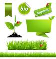 Green Eco Set With Leaf And Ladybug vector image