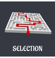 Labyrinth with the word Selection below vector image vector image