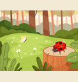 ladybug in wood green natural park with funny vector image