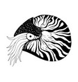 nautilus coloring book black and white hand vector image vector image