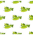seamless pattern of soybeans flat style vector image vector image