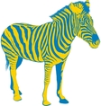 Yellow Blue Zebra vector image vector image
