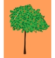 An orange tree vector image vector image