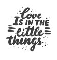love is in little things lettering phrase vector image