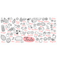 set drawings of fruits for design menus recipes vector image vector image