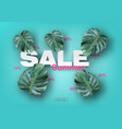summer sale banner with realistic tropical leave vector image
