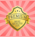 100 best quality golden label topped by star gold vector image