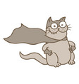cartoon cat superhero in mask and raincoat vector image vector image