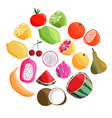 collection exotic tropical fruit isolated vector image