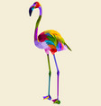 colorful flamingo vector image