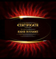 gold certificate achievement vector image