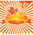 Vintage Pumpkin Background vector image vector image