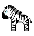 zebra isolated on white background vector image vector image