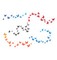 bird background template vector image vector image