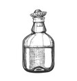 design blank tequila bottle mexican hat cap vector image vector image