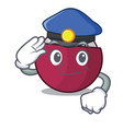 police character tropical mangosteen isolated on vector image vector image