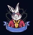 rabbits use american glasses vector image vector image