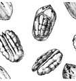 seamless pattern with hand drawn pecan nuts vector image vector image