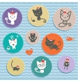 Set of animal icons Cats in cap vector image