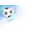 soccer banner with football ball net glitter and vector image vector image