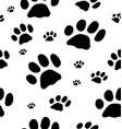 trace of cats vector image vector image