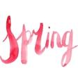 Watercolor Spring Calligraphy Script vector image vector image