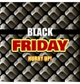 Black Friday Background vector image