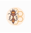 Bee with honeycomb flat icon vector image