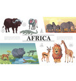 cartoon african animals composition vector image vector image