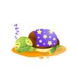 cute kawai turtle sleeping under blanket isolated vector image vector image