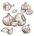 Engraving garlic
