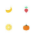 flat icons lime jungle fruit radish and other vector image vector image