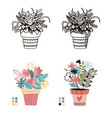 flowers in pots painted black line on a white vector image vector image