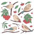 hand drawn set of birds branches leaves berries vector image vector image