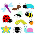 insect icon set lady bug caterpillar butterfly vector image vector image