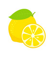 lemon isolated on white background vector image vector image