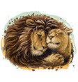 leos a lion embraces a lioness vector image