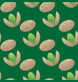 pistachios seamless pattern vector image vector image