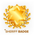 sheriff badge golden star sevurity emblem vector image vector image