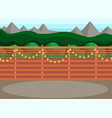 sunny back yard with fence decorated with garland vector image vector image