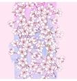 Background with sakura vector image vector image
