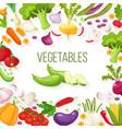 frame fresh vegetables for your design vector image