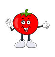 funny tomato character cartoon design isolated on vector image