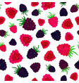 raspberry background painted pattern vector image vector image