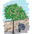 Scooter near a tree vector image vector image