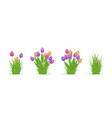 spring floral tulip and grass bundles of different vector image vector image