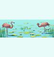 flamingos on lake among water lilies vector image vector image